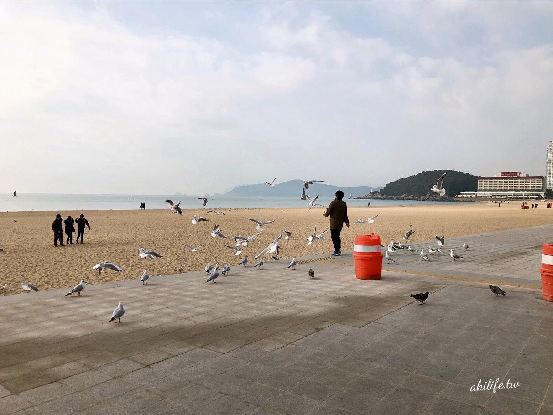 2017.2018韓國釜山旅遊 - 39623959515.jpg