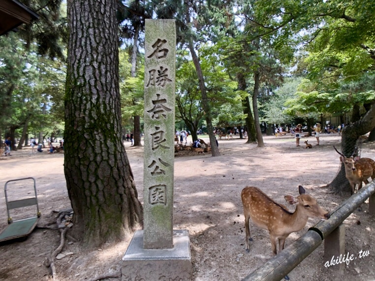 2018京阪奈旅遊 - 42075900030.jpg